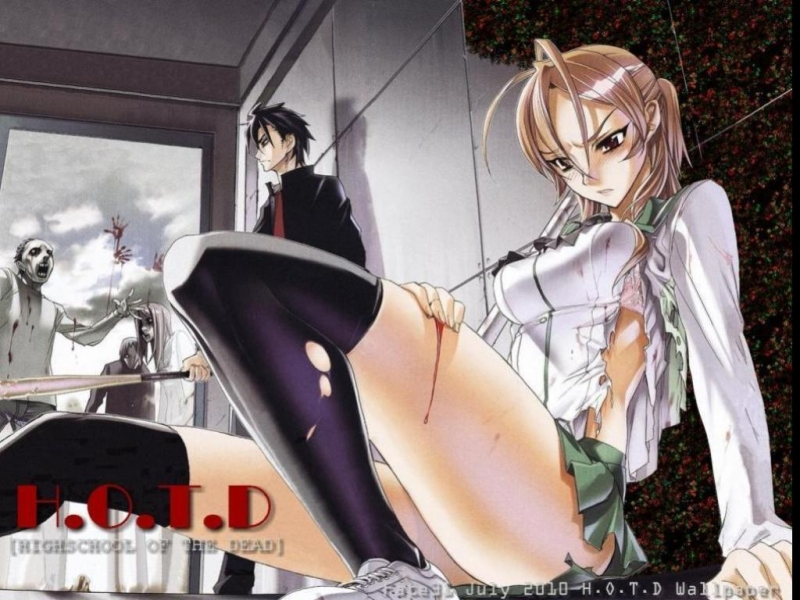 High School of the Dead 800-by-600-567771-20100713070627
