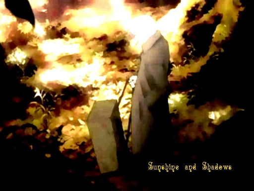 Mushishi - Sunshine